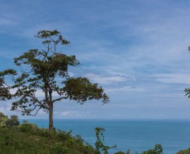 Casa Wyrica ocean view